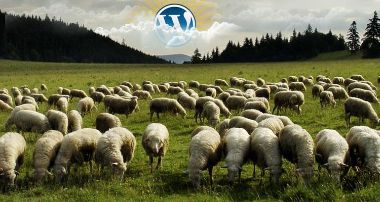 Por que não usamos mais o WordPress para criação de sites