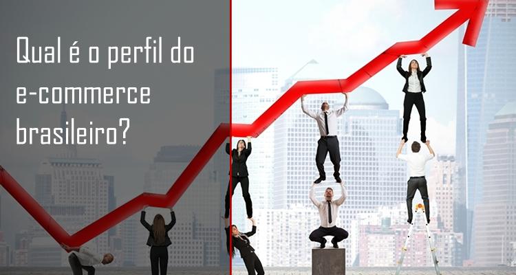 Qual é o perfil do e-commerce brasileiro?