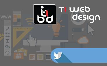 Ti Web Design